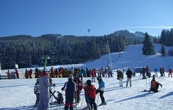 Medium fill 5277aa6cb5 ski lessons 255500 640