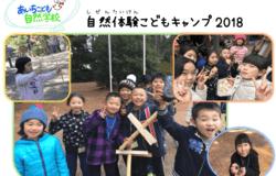 Medium fill ba53b7fbc9 singly children recruiting 68775 main